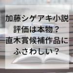 加藤シゲアキ直木賞候補小説の評価